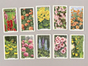 Gallahers cigarette cards