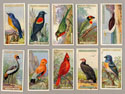 Ogdens cigarette cards